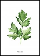 Parsley Plakat