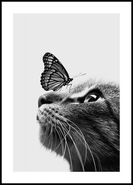 Cat and Butterfly Plakat