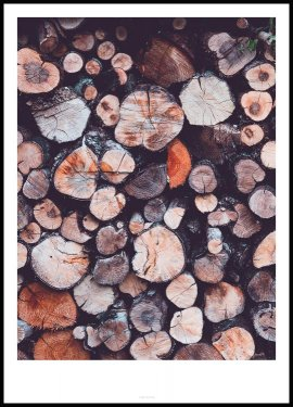 Tree Rings Plakat