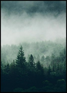 Tree Top Fog Plakat