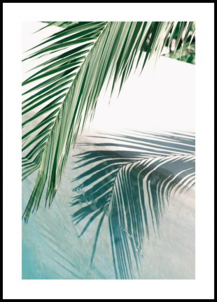 Poolside Palm Leaf Plakat
