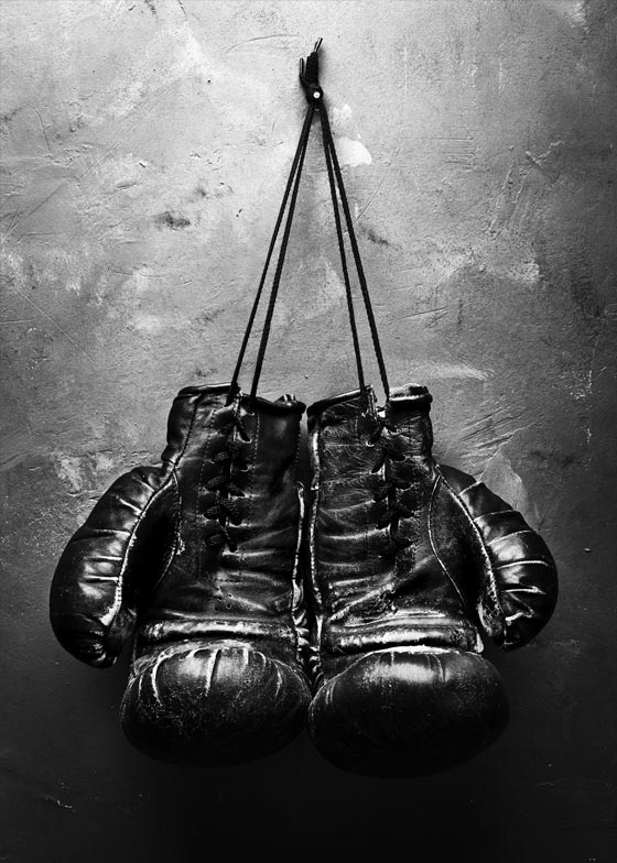 Boxing Gloves Plakat